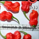 chilin poltteessa 2014