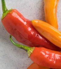 Keskituliset chilit